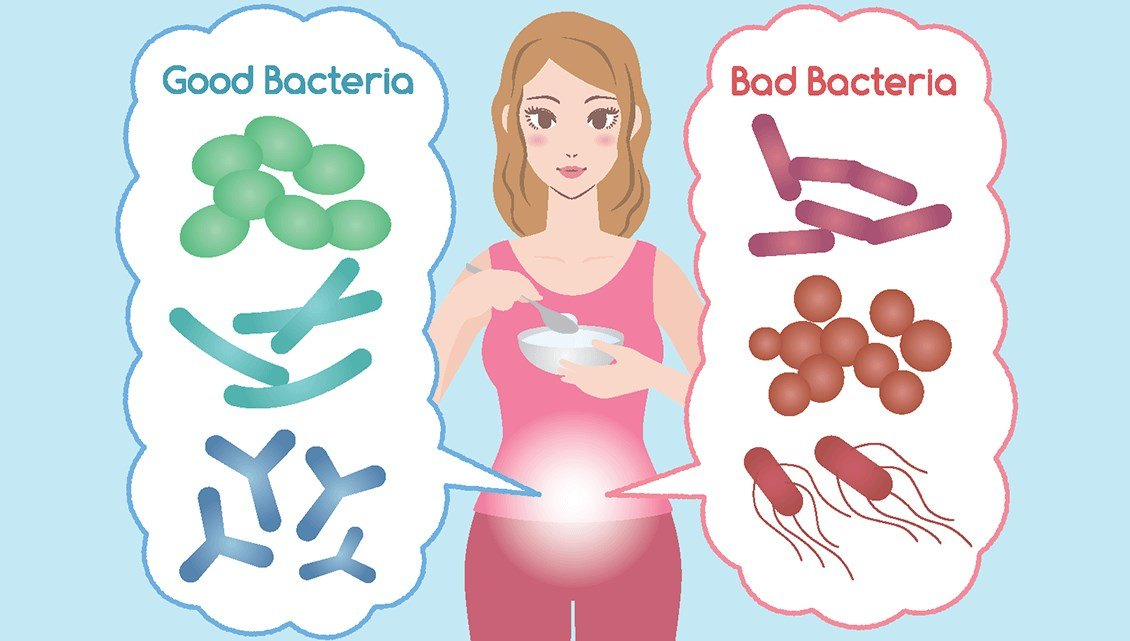 Best Probiotics for Women's ph Balance