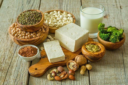 High Protein Vegetarian Diet for Bodybuilding