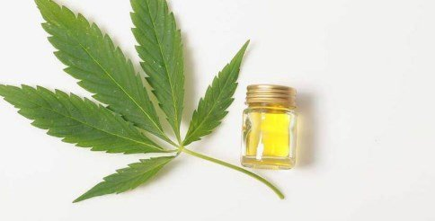 difference of cbd oil and hemp oil