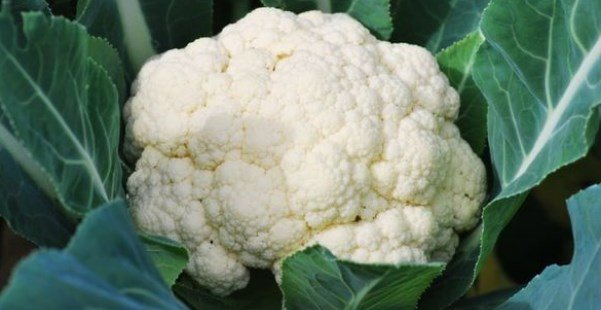 How Many Calories In Cauliflower
