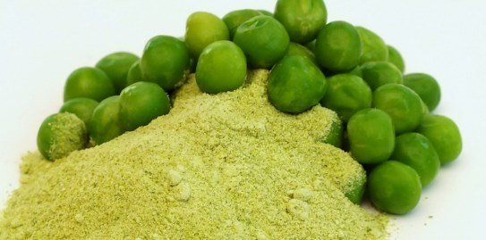 Whey protein alternatives
