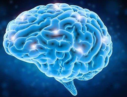 Improves Brain-Body Coordination
