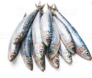 Most Nutrient Dense Foods